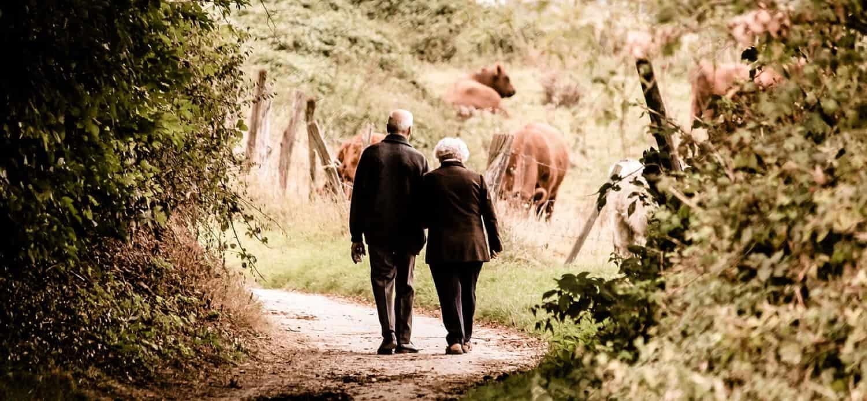 gammelt ægtepar går tur i skoven