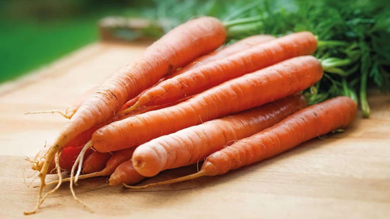 Gulerødder på bord