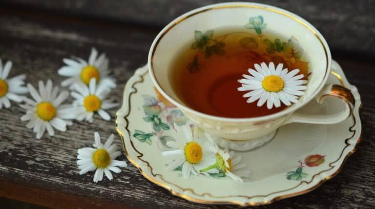 Kamillete - med blomster
