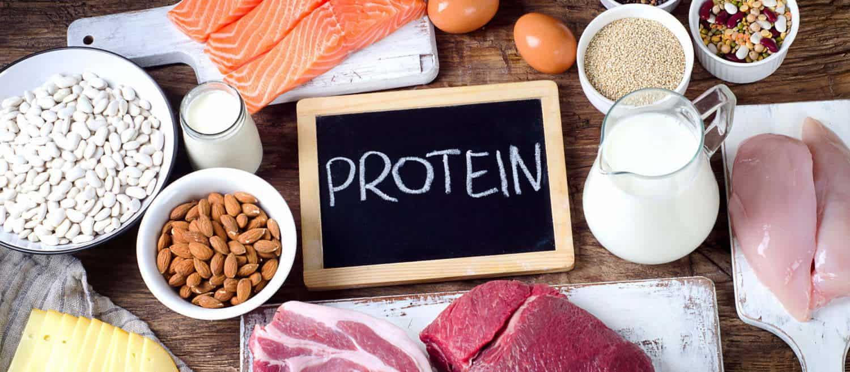 billede af mad med protein