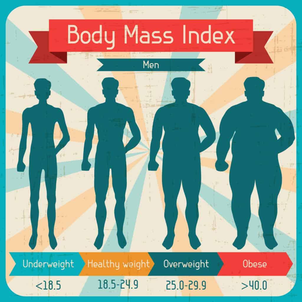 Body mass index for mænd med undervægtig, sund vægt. overvægttig, fed