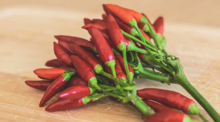 den sunde grøntsag chili